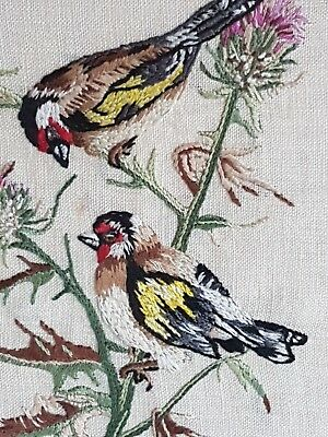Beautiful Vintage Hand Embroidered Picture Of Goldfinches Feeding On A Thistle