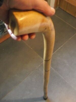 Shillelagh Walking Stick Rounded Smooth Handle Lighter Than Blackthorn Spalted