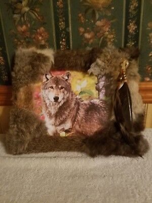 8x10 framed wolf picture with rabbit fur and FREE TALKING FEATHER!