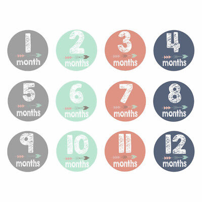 12x Baby Pregnant Women Monthly Photograph Sticker Gifts 1-12 Milestone Stickers