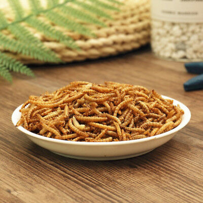 100G-2KG Fish Bird Food Protein Rich Mealworm Organic Dried Worm Livefood Shovel