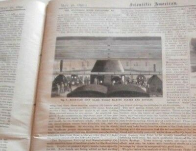 1890 Tallapoosa Georgia The Industrial South Report