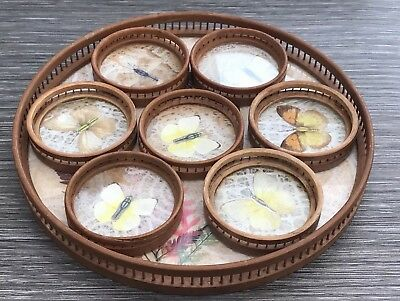 Vintage Taxidermy Butterfly Bamboo Tray & 7 Coasters Kitsch Retro Unusual Lovely