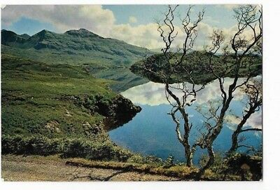 Loch Assynt and Quinag ; Lochinver