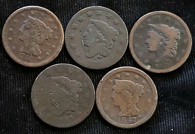 U.S. Large Cent Lot- All nice Culls Mixed Lot of 5 1817, 1830, 1837, 1847, 1856