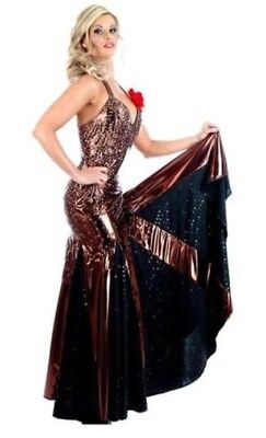 8d4c24c75 Tango Dress, (Strictly Come Dancing), adult womens costume, Small