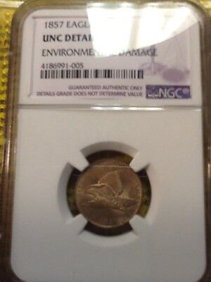 1857 flying eagle cent uncirculated details by NGC. RED BROWN.