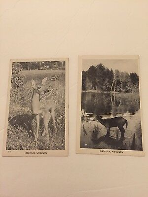 2- Vintage postcards of Radisson , Wisconsin, Real Photo. Unmarked