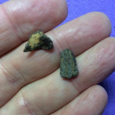Henbury  Iron Meteorite , 2 small fragments  . From Australia.  2.4 grams