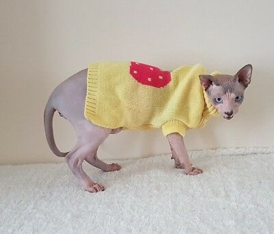 STRAWBERRY winter sweater Sphynx cat clothes sweater jumper Katzenbekleidung
