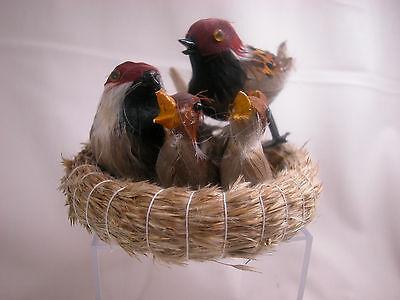 Closeout Birds At Nest  w/chicks Set Feather Friend Last Stock Home Decor #B930
