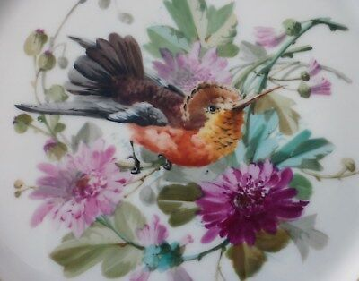 Beautiful French Porcelain Plate With Hand Painted Bird & Flowers - Pillivuyt