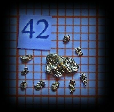 10 Gold Nuggets aus Alaska (42)