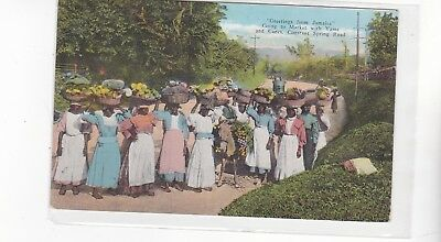 Greetings from Jaimaica early 1900s postcard
