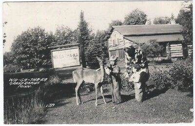 RPPC, Grand Rapids,MN, WA-GA-THA-KA Camp,Lake Wabana,photo postcard,history,deer