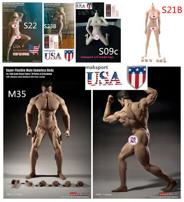 US TBLeague PHICEN 1/6 Female /male figure Seamless S21B /S22/S09C/S23B/M35 body