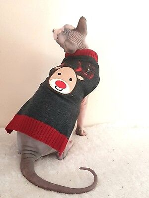 christmas REINDEER, Sphynx cat clothing, winter cat sweater, jumper Nacktkatze