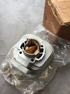 Yamaha Rs100 Rs-100 Engine Cylinder Nos 463-11311-02