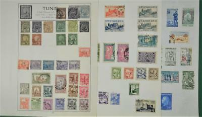Tunisia Early Stamps Selection On 3 Album Pages   (T160)