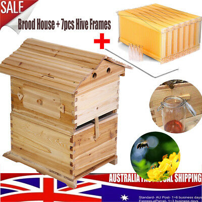 Wooden Beekeeping Beehive Brood House Box + 7pcs Auto Flow Honey Hive Frames ho