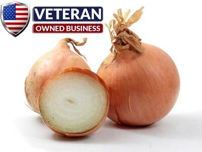 Onion seeds Yellow Sweet Spanish 600+ Non-GMO and Heirloom vegetable seeds