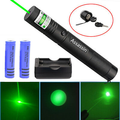 10Miles 532nm 301 Green Laser Pointer Burn Lazer Pen 18650 Battery Dual Charger