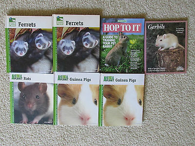 Lotto da 7 Small Animal Pet Negozio Libri Animal Planet Ratti ~Furetti~