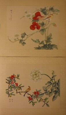 "FL100 Pair convolvulus poppies Chinese paintings on silk 18½""x16"" i14½""x12"""