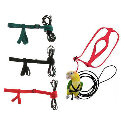Baoblaze Parrot Bird Leash Outdoor Adjustable Harness Training Rope Supplies