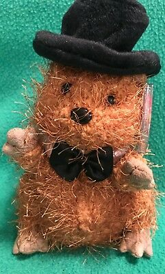TY Beanie Baby PUNXSUTAWNEY PHIL 2005 the Groundhog MWMT 6.5