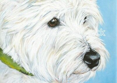"West Highland Terrier ACEO WESTIE PRINT Painting ""WATCHING SQUIRRELS"" RANDALL"