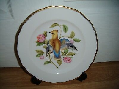 Spode Y6466 Hand Painted Bird Cabinet Plate ~ Bohemian Waxwing ~ 1st ~ Excellent
