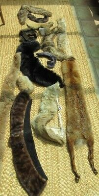 large lot of vintage furs assorted collars fox with head