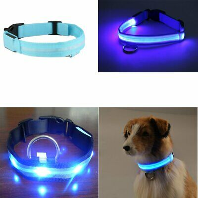 LED Light-up GLOW COLLAR Dog Pet Safety Belt Harness MICRO USB RECHARGEABLE XL