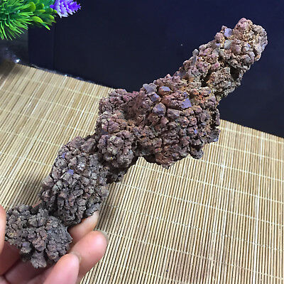 164mm Rare dinosaur dung coprolite Fossil Petrified Poop  311g