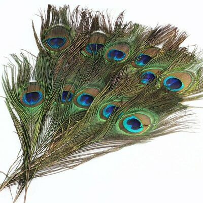 10/20/50/100pcs Peacock Tail Eyes Feather 8-12 Inches For Bouquet DIY Decoration