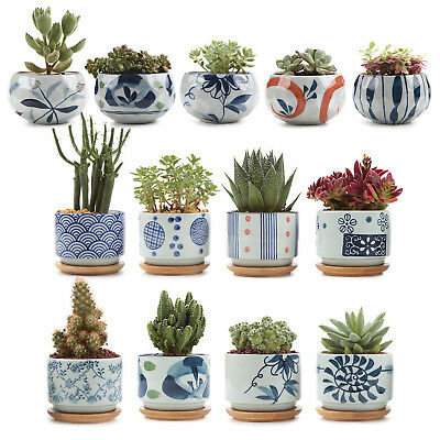 Ceramic Succulent Planter Pot with Bamboo Tray, Small Cactus Plant Pot Container