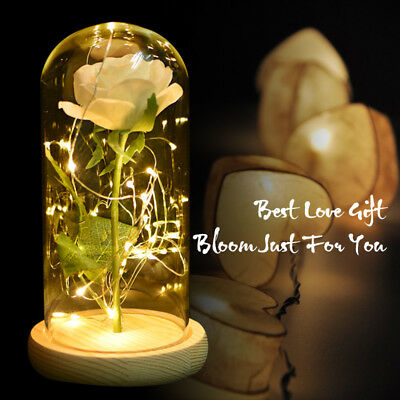 WR White Rose Glass Lamp Dome LED Lighted Eternal Love Christmas Wedding Gifts