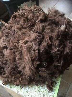 Alpaca fleece Suri - 1 Kg Super Fine Dark Fawn. Raw Fleece With Vegetable Matter