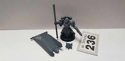 Warhammer 40k - Space Marines - Ancient Standard Bearer (236)