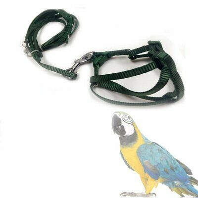 Pet Bird Harness and Leash Aviator Parrot Foot Adjustable Soft Easy And Safe PB