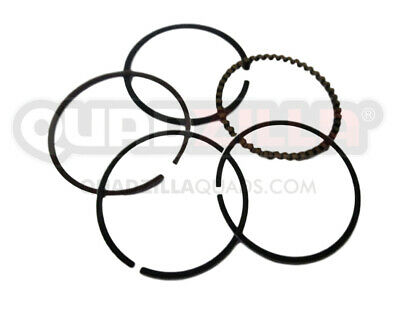 Genuine Quadzilla Dinli 450 Piston Ring Set