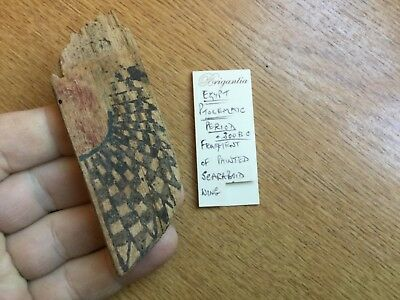 Egyptian Ptolemaic Period Wooden Fragment of Painted Scaraboid Wing 300 B.C.