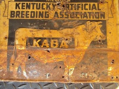 Vintage Kentucky breeding great  Bshot Pure Bred Bull Cattle Cow Farm Metal Sign