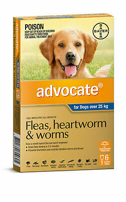 Advocate for Dogs Over 25kg 6 Doses PLUS 2 EXTRA Doses
