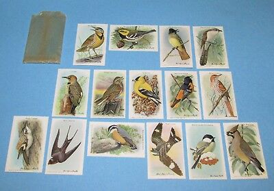 Vintage Arm & Hammer 15 Beautiful Birds Collectible Cards 10th Series w/Envelope