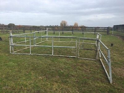cattle partitions/pen