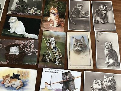 Lot Of Old Postcards Cats & Kittens