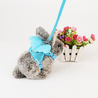 Rabbit Traction Belt Traction Rope Bell Angel Wings Slipping Rabbit Rope EI