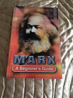 Marx A Beginners Guide